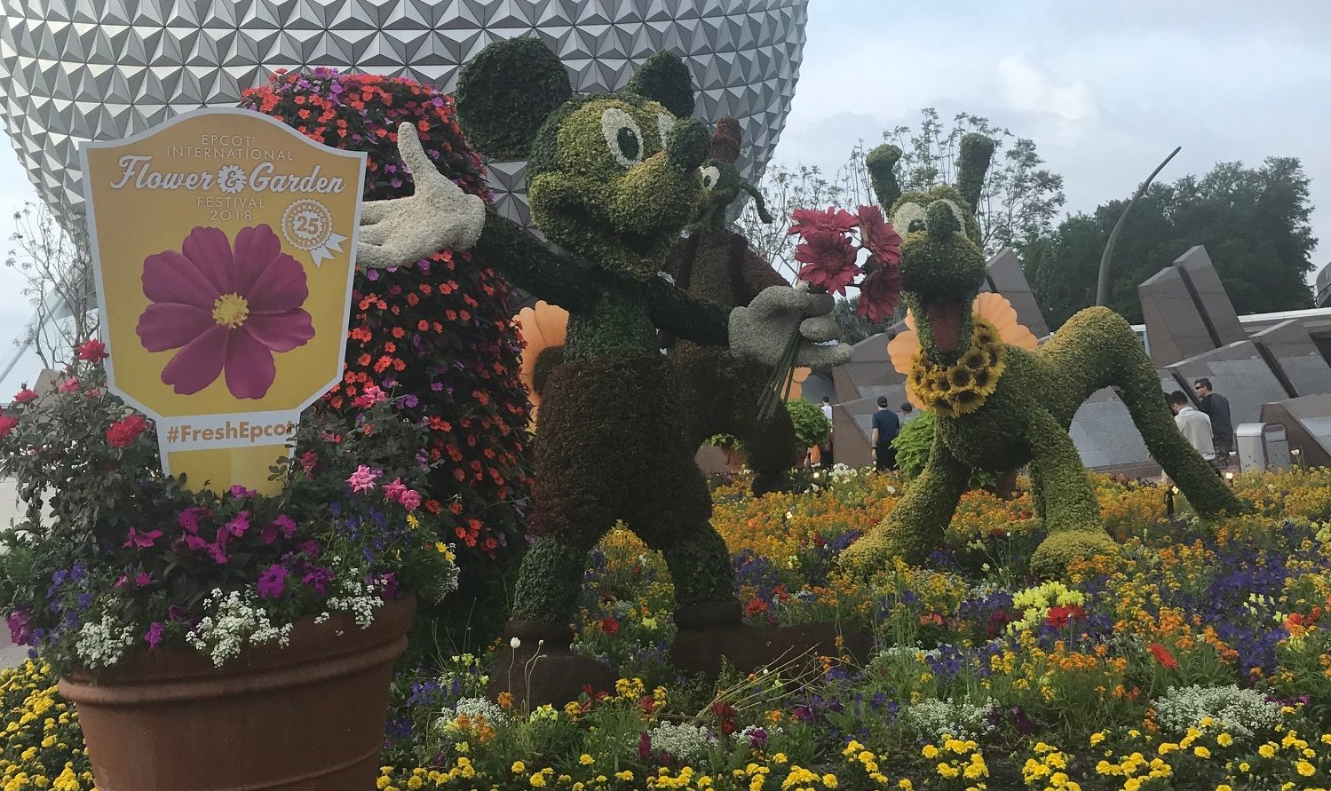 Expanded concert lineup coming to epcot s flower garden - Epcot flower and garden concerts ...